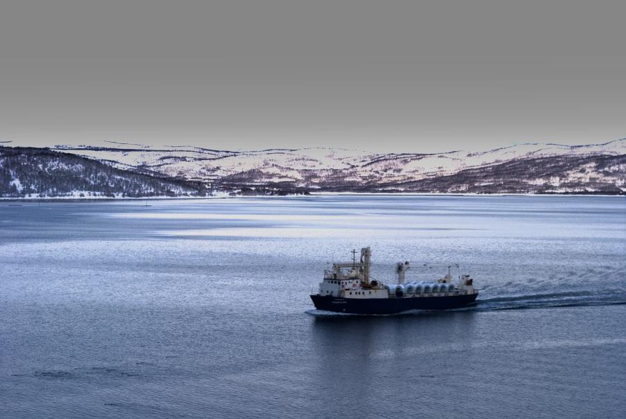 Norwegen Elisabeth B-110
