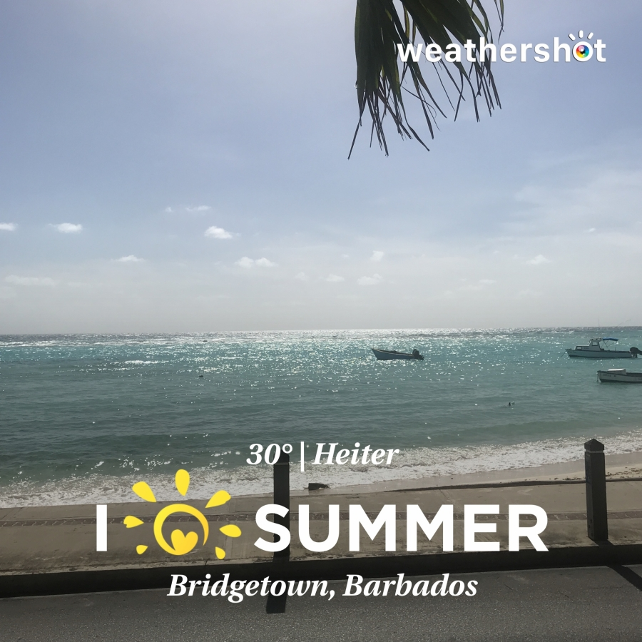Karibik 2017 (1554 von 1815)