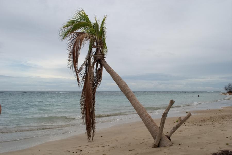 Karibik 2017 (873 von 1815)