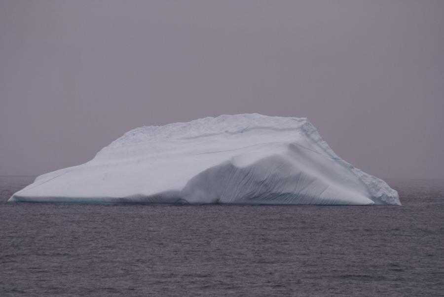 Island Grönland 2018 (556 von 2507)-min